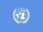 Египет в СБ ООН пытается нейтрализовать признание Трампа