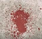 Убит французский палач Исламского государства