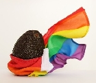 В израильском городе впервые провели гей-парад