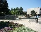 Университеты Израиля вновь попали в глобальный рейтинг