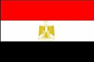 Главный разведчик Египта едет к Абу-Мазену и в Газу