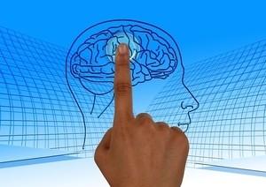 Исследователи нашли «клетки беспокойства» в мозге