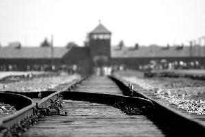 Министр иностранных дел: «Только Германия несет ответственность за Холокост»