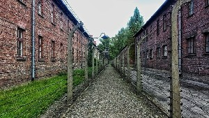 Больше ни слова о Холокосте в Польше