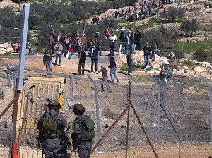 Немецкий турист встал на сторону палестинцев