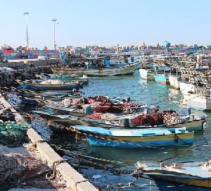 Израиль увеличил рыболовную зону у побережья Газы