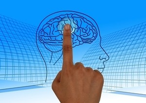 Похудение зависит от активности в определенных зонах мозга, связанных с самоконтролем
