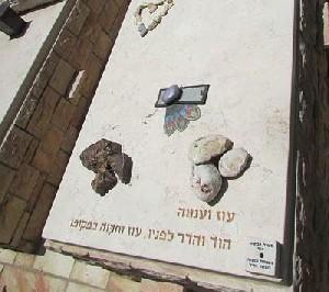 Отец Хадара Голдина требует не заключать перемирие с ХАМАСом