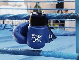 Молодой боксер из Украины победил соперника за 110 секунд
