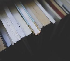 Стоит ли изучать дневник Анны Франк в школе?