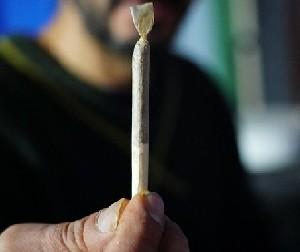 Если ты куришь траву, евреев можно убивать безнаказанно